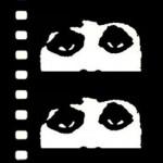 cinema eyes of the Chicago International Film Festival